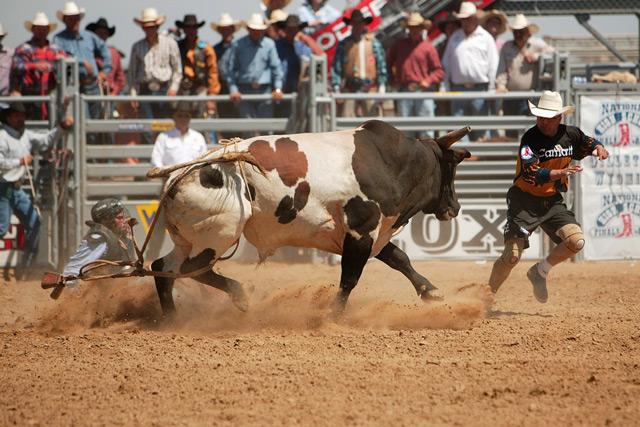 rodeo-finals