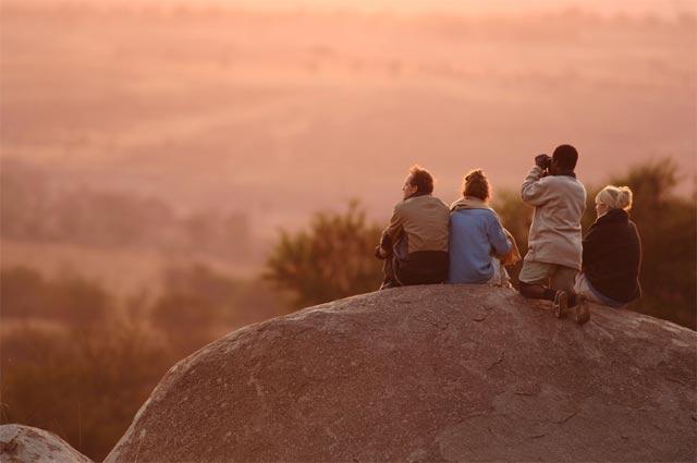 serengetti-safaris