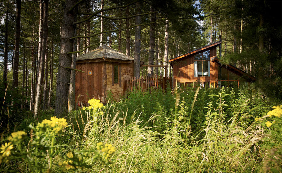 forest-holiday-treehouse