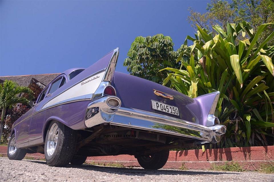 cuba-cara-purple
