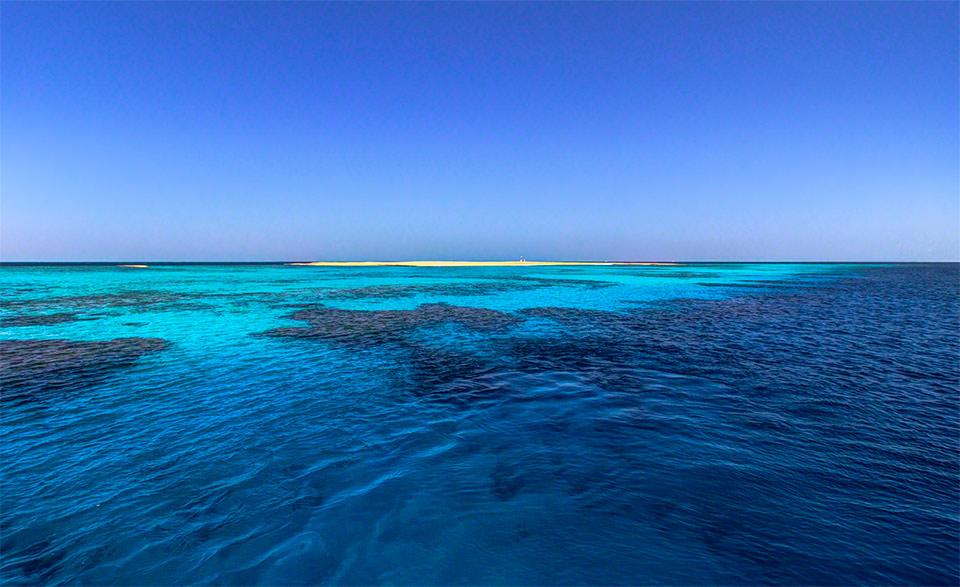 coral-reef-1
