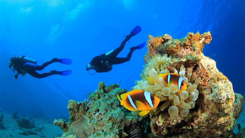 kas-turkey-diving